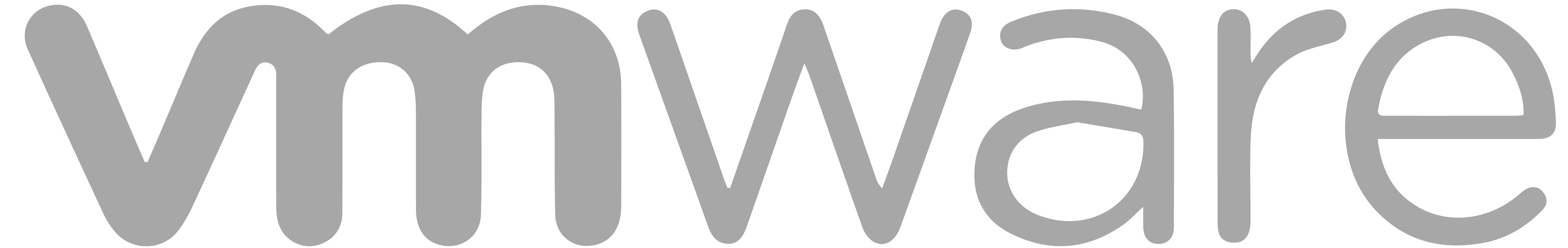 software development VMware